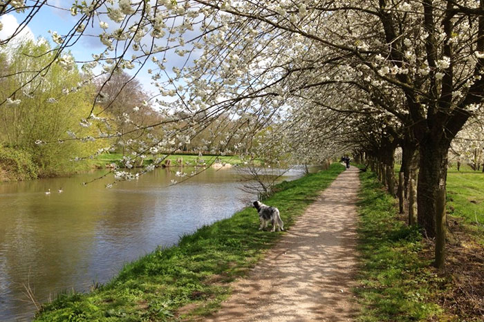 netherlands-utrecht-estate-amelisweerd-river-walk