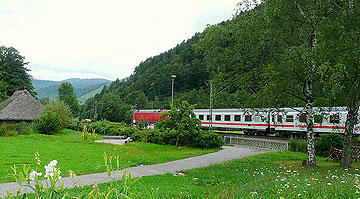 train_crossing_black_forest_germany